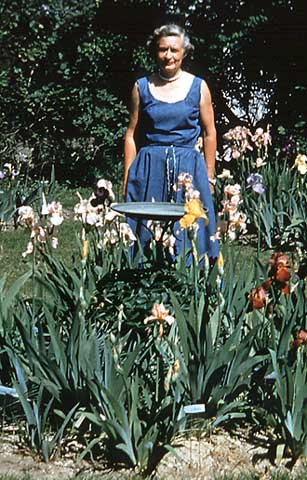 Mary Williamson